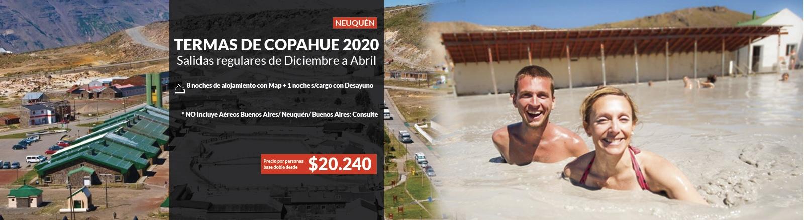 Copahue 2020
