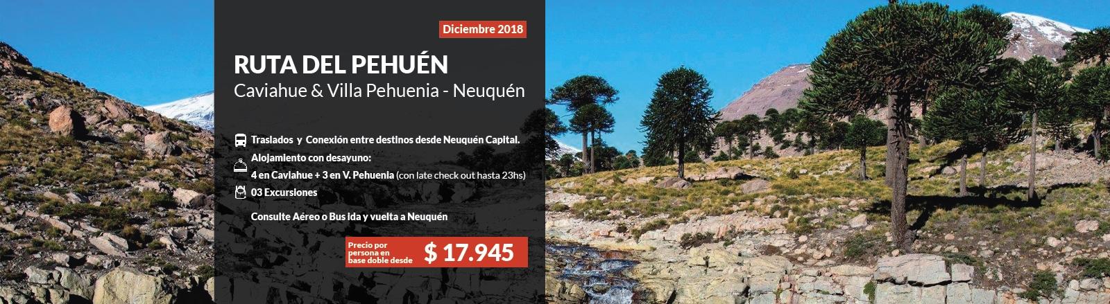 Ruta del Pehuen Villa Pehuenia & Caviahue