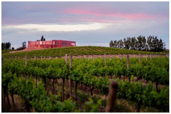 Ruta del Vino de la Patagonia