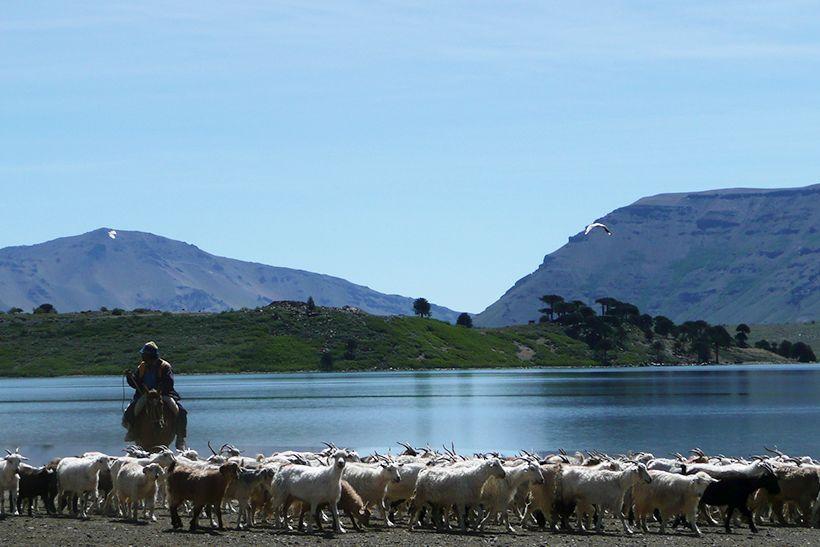 Conozcamos más de Caviahue;Laguna Hualcupény las Comunidades Mapuches