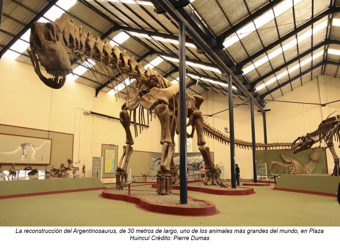 Neuquén: un circuito para fanáticos de los dinosaurios