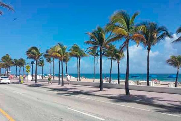Miami  & Punta Cana 2020 (EEUU | Rep. Dominicana)