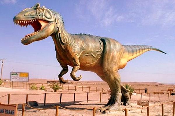Dinosaurios, Volcanes y Pehuenes - Neuquén (Ciudad) / Caviahue/ Villa Pehuenia