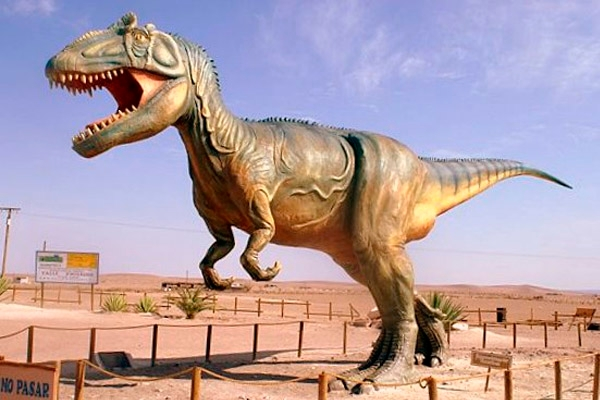 Dinosaurios, Volcanes y Pehuenes