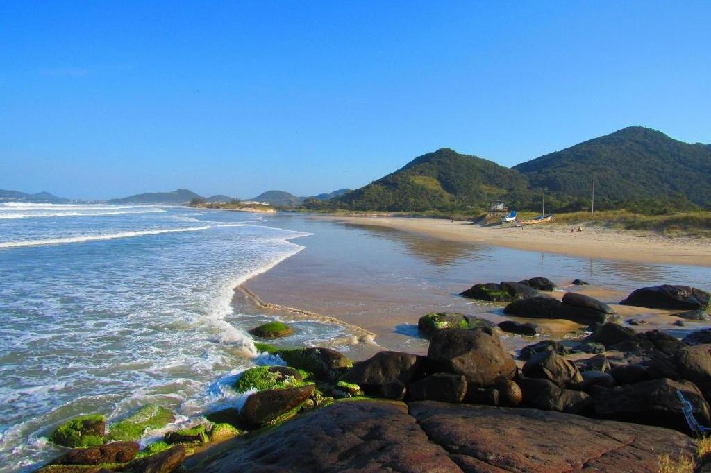 Ferrugem -Brasil