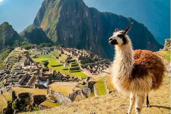 Amanecer en Machu Picchu | Perú